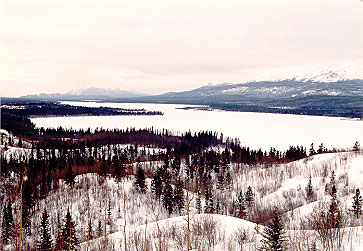 Little Atlin Lake - Frozen Solid